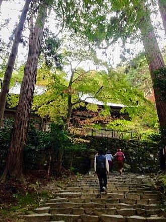 hyakusaiji-002.jpg