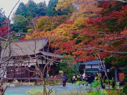 hyakusaiji-003.jpg