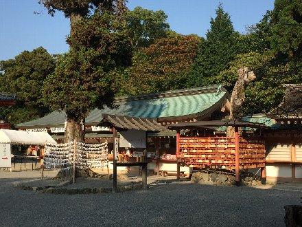 iwashimizu-033.jpg