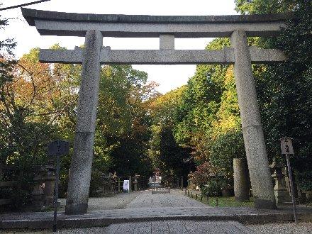 iwashimizu-080.jpg