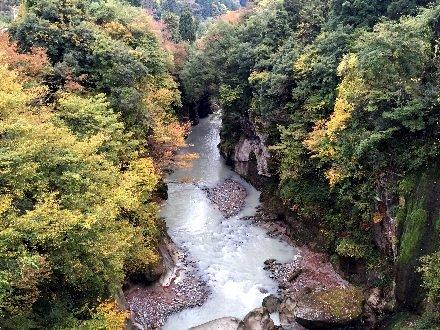 nishikigataki-039.jpg