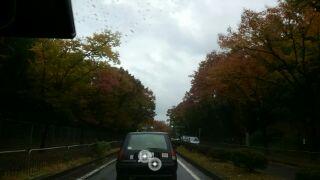 雨のドライブ2