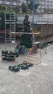 クリスマスツリー全景