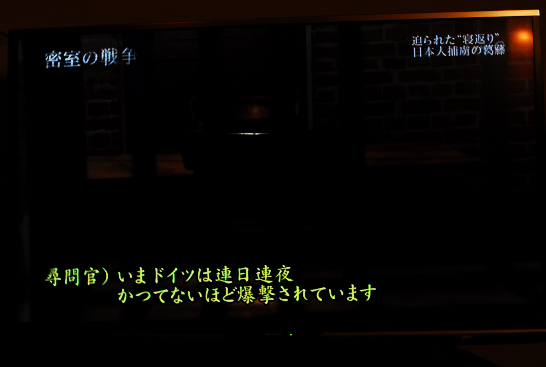 DSC_4647.jpg