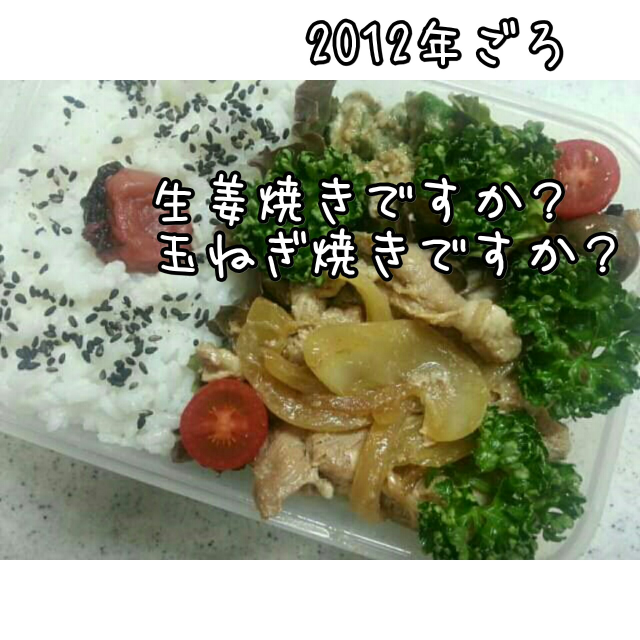 20101110-8.jpg