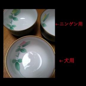 PhotoGrid_1446978667647.jpg