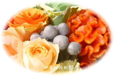 2015年ボムボムの命日のお花④