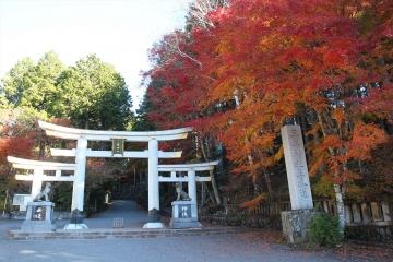 151104三峯神社 (8)_R