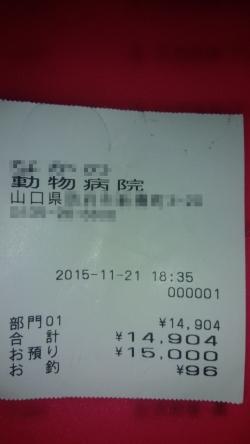 15-11-21-001s.jpg