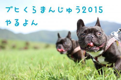 2015_1025_1.jpg