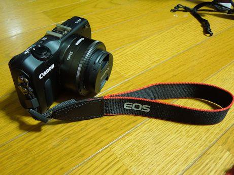 DSCN8333_kansei.jpg