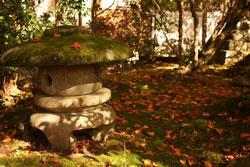 西明寺 石灯籠