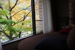 渓流沿いの部屋