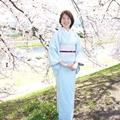 葵桜 きもの着付け教室
