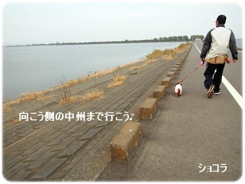 151107_8309.jpg