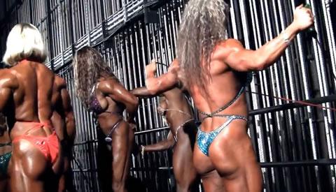 アダルト動画:〔洋〕 筋肉女達のトレ-ニング風景