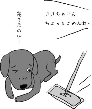 フローリングワイパーと犬