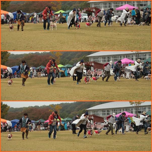 20151026211150a8a.jpg