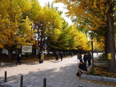 Sapporo201510-208.jpg