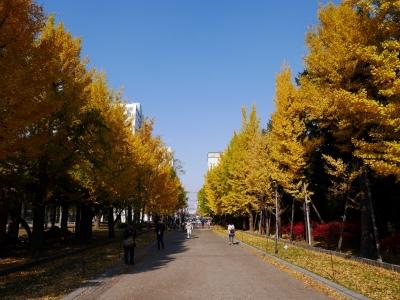 Sapporo201510-223.jpg
