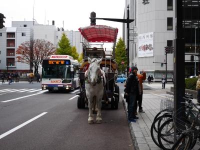 Sapporo201510-406.jpg