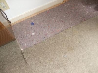 既存のカーペットを撤去