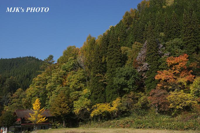 yamabiko5695.jpg