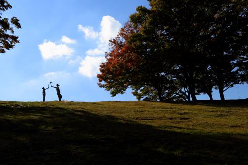 秋味 ・・・ サムネイル画像