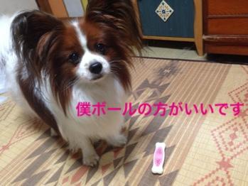 fc2blog_2015111021491662c.jpg