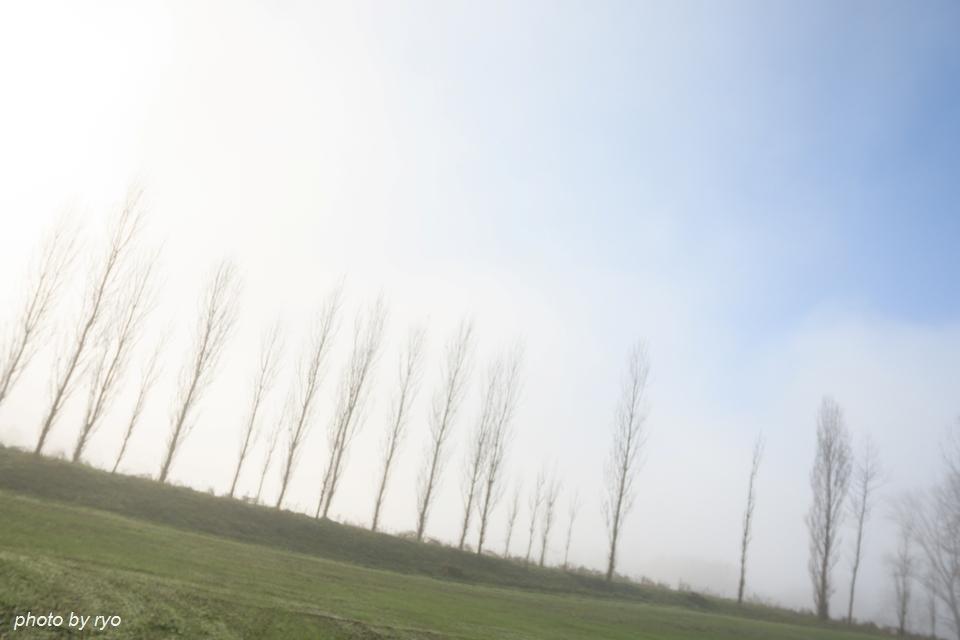 霧の七塚原高原 3