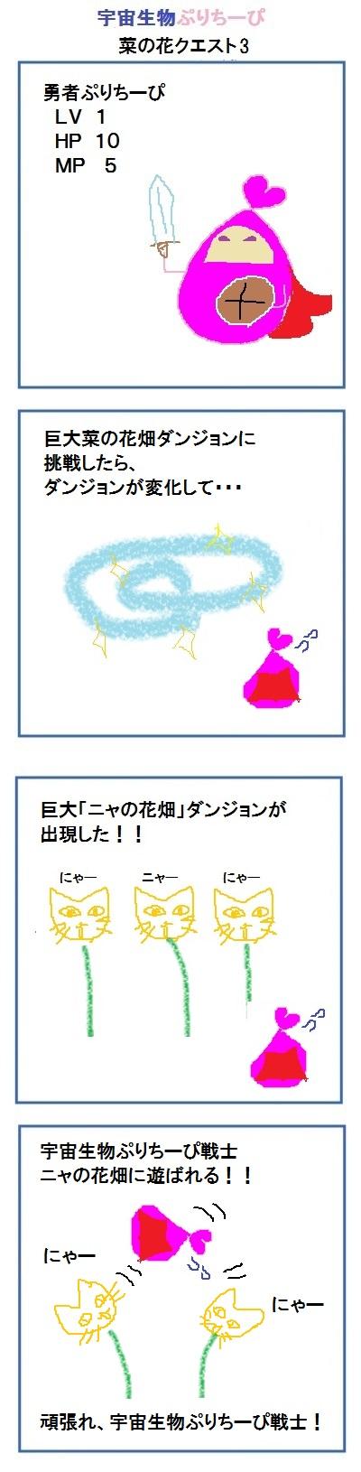 160316_nanohana_quest3.jpg