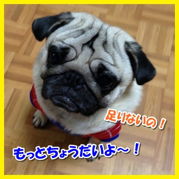 IMG_1724-1_20151116205754206.jpg