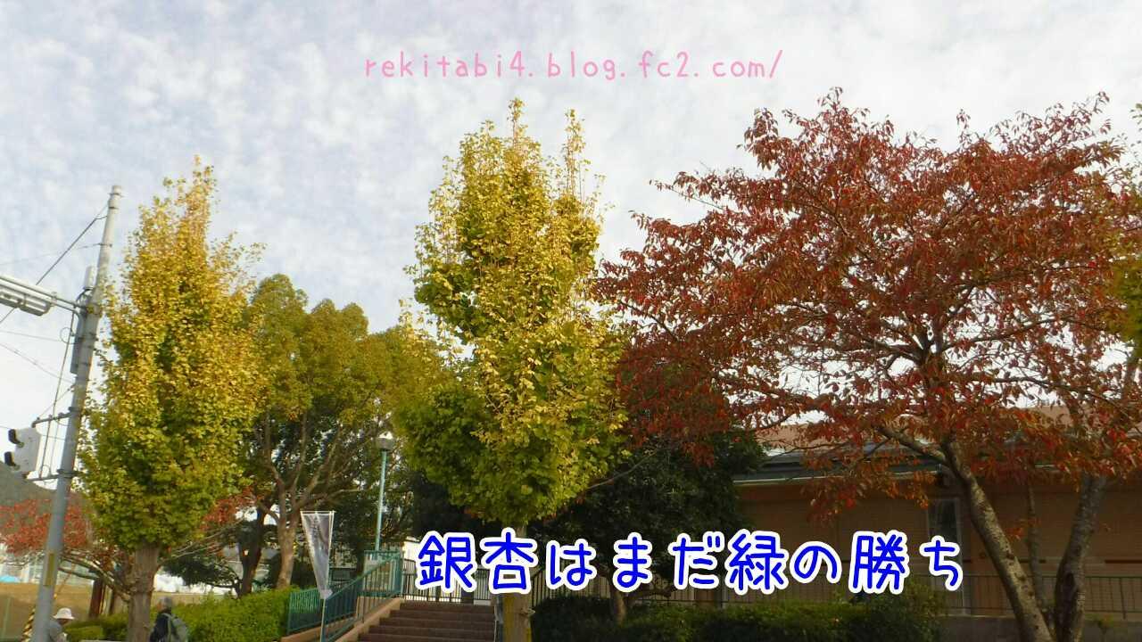 20151101220938245.jpg