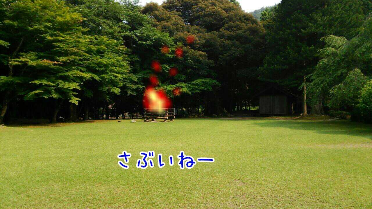20151111233815713.jpg