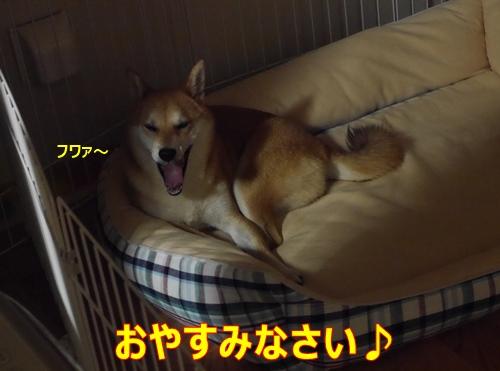 7おやすみ