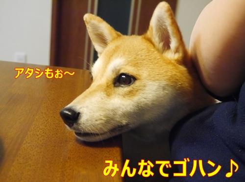 7家族団らん作戦