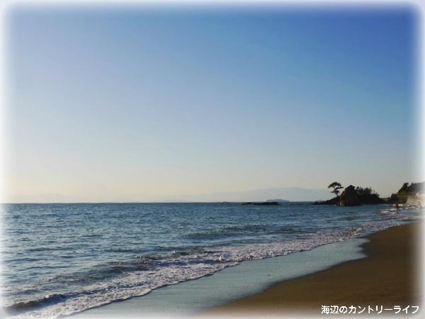 秋谷海岸♪