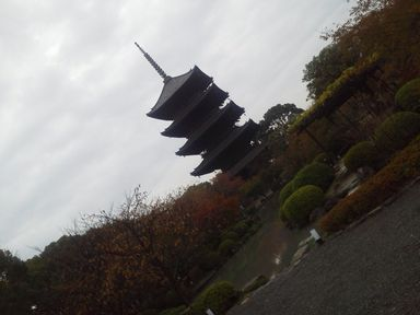 touji2015aki.jpg