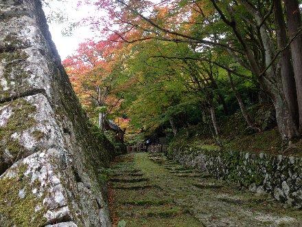 hyakusaiji-013.jpg