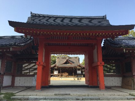iwashimizu-001.jpg