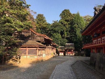 iwashimizu-054.jpg