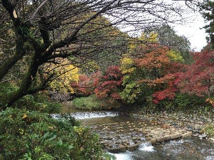 kyoto-yase-106.jpg
