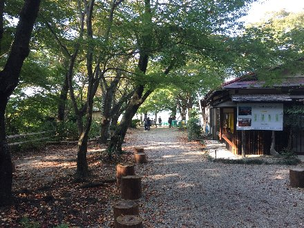 otokoyama-022.jpg