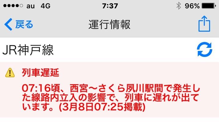 S__16015363.jpg
